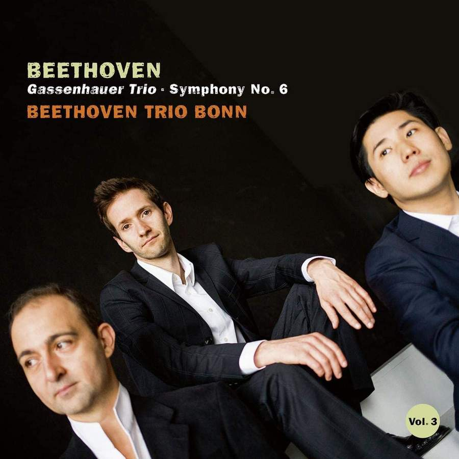 AVI8553114. BEETHOVEN Gassenhauer Trio. Symphony No 6 (Beethoven Trio Bonn)