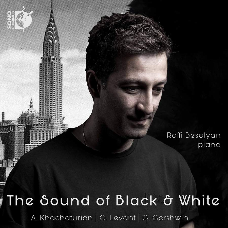 Review of Raffi Besalyan: The Sound of Black and White