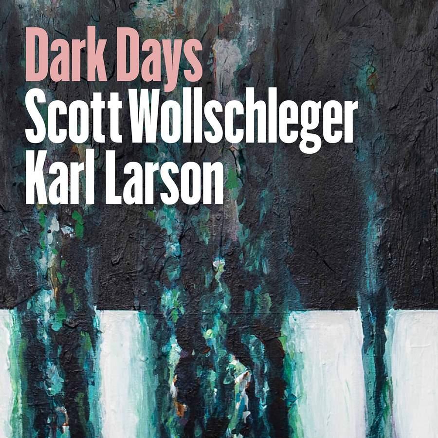 Review of WOLLSCHLEGER Dark Days