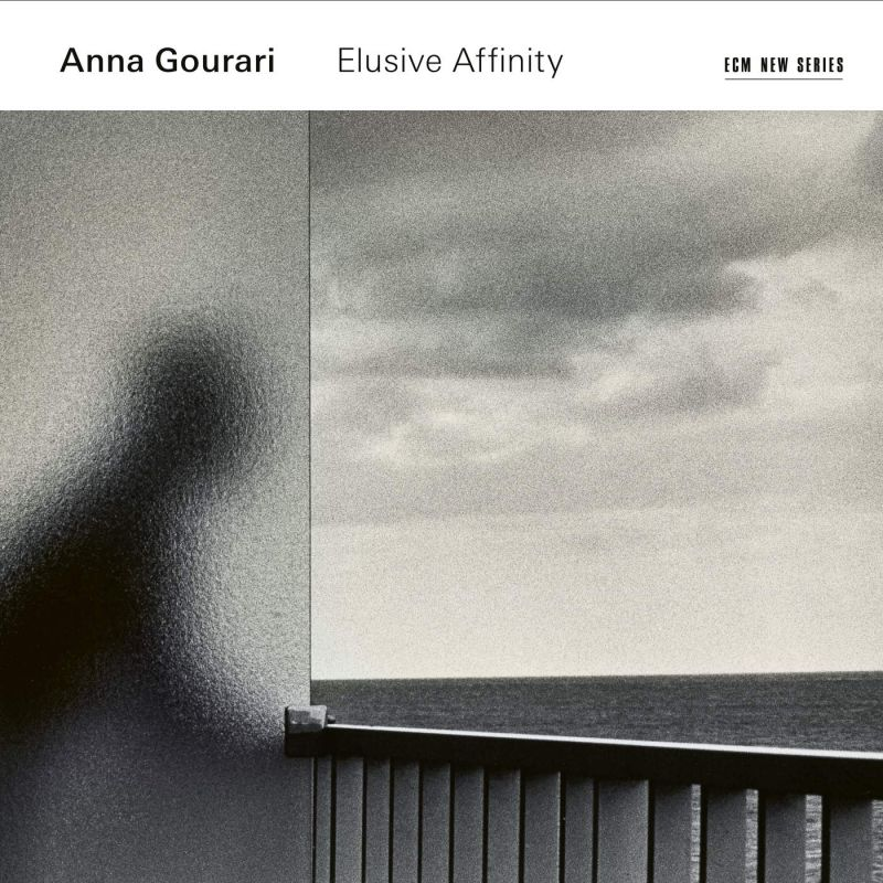 Review of Anna Gourari: Elusive Affinity