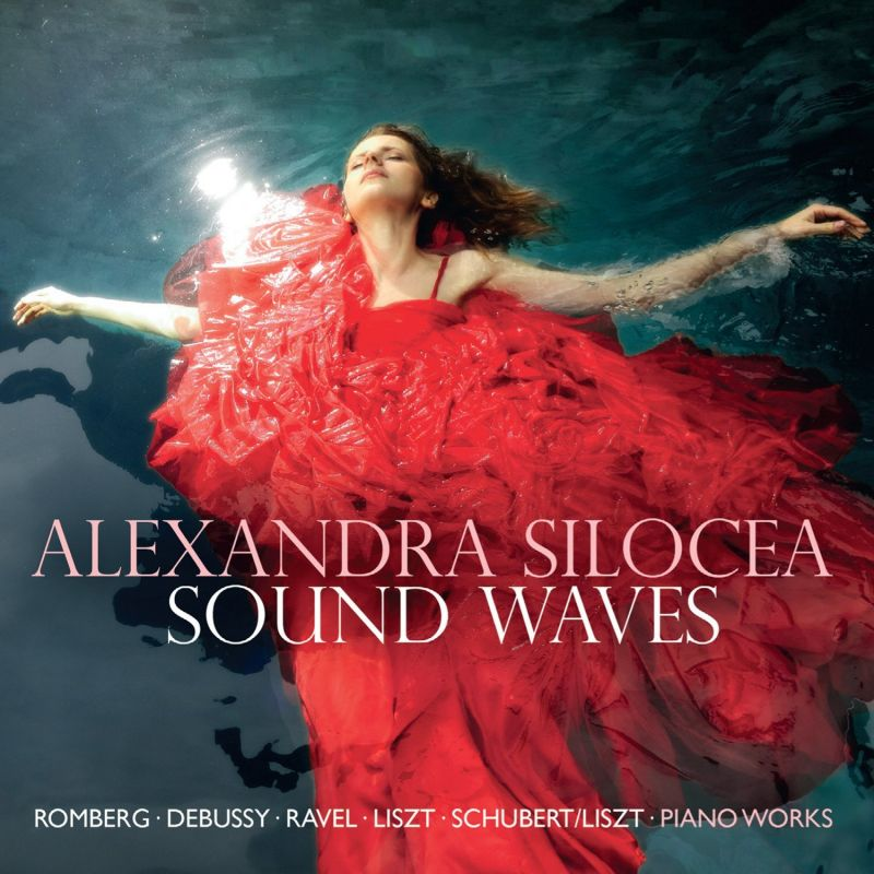 AV2266. Alexandra Silocea: Sound Waves