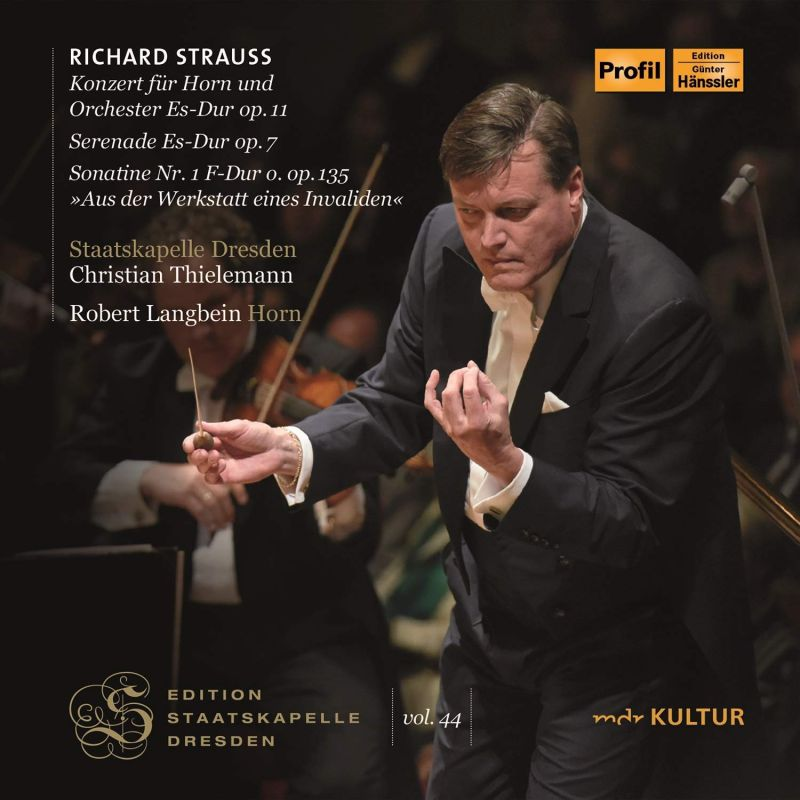 Review of STRAUSS Horn Concerto (Robert Langbein)
