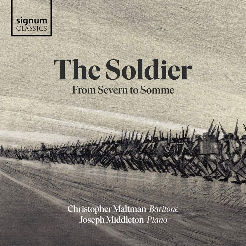 Review of The Soldier: From Severn to Somme