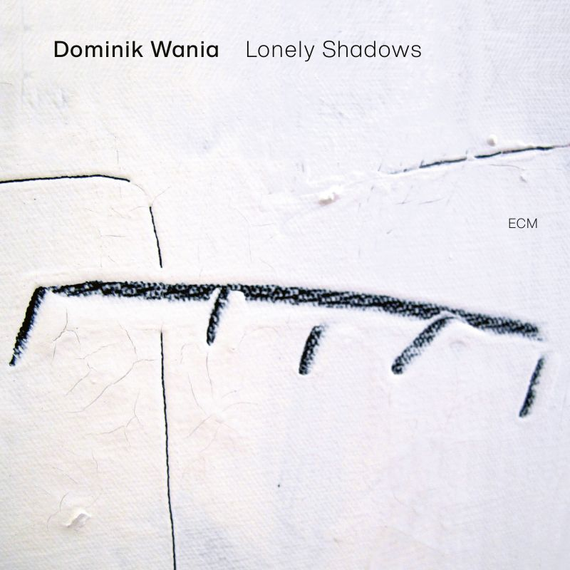 Review of Dominik Wania: Lonely Shadows