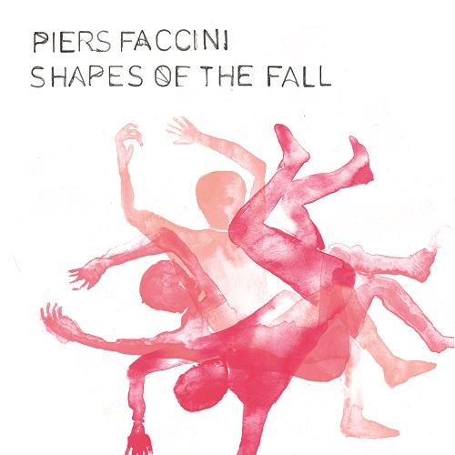 Review of Shapes of the Fall